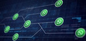 Why Does Your Website Need WhatsApp Integration
